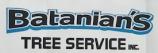 mcw_client_batanian_tree_service